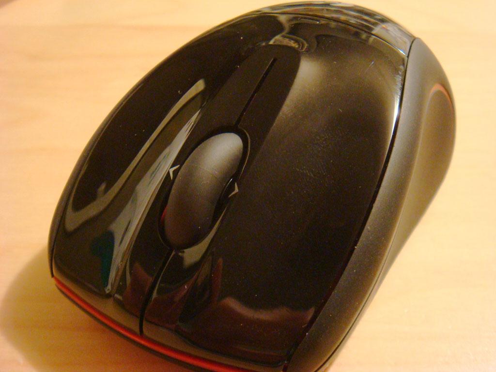 Close-up looks like Batman mouse
